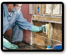 Bergen County, New Jersey Mold Removal Company